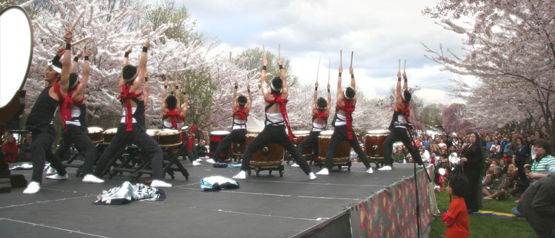 Experience Japan at the Subaru Cherry Blossom Festival