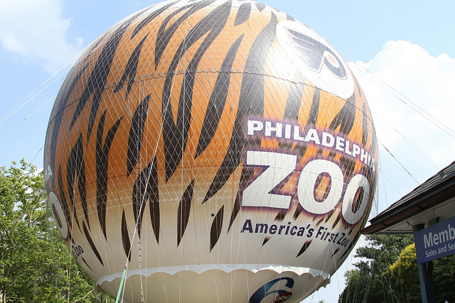 Take a Walk on the Wild Side at the Philadelphia Zoo