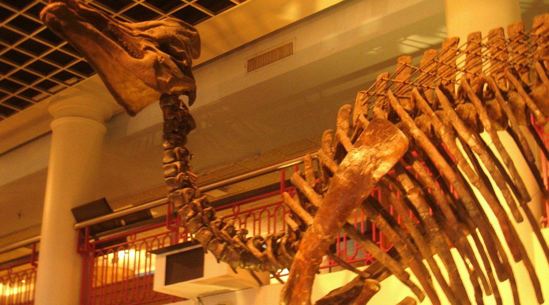 Philadelphia museum - Philadelphia attractions