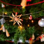 Take the Family to Adventure Aquarium's Christmas Celebration